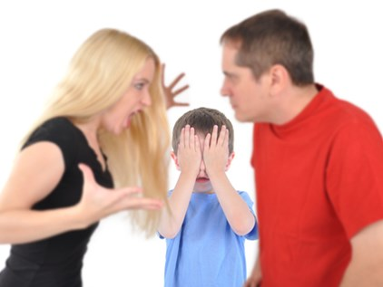 family and children's issues
